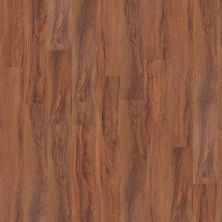 Shaw Floors Vinyl Residential World's Fair 6mil St. Louis 00618_0318V