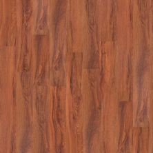 Shaw Floors Vinyl Residential World's Fair 12mil St. Louis 00618_0319V