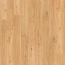 Shaw Floors Vinyl Residential Columbia 6 Waterfall 00219_0335V