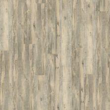 Shaw Floors Vinyl Residential Columbia 6 Canyon 00516_0335V