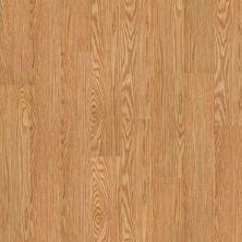 Shaw Floors Vinyl Residential Klamath Shasta 00243_0336V