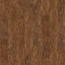 Shaw Floors Resilient Residential Klamath Kingsley 00301_0336V