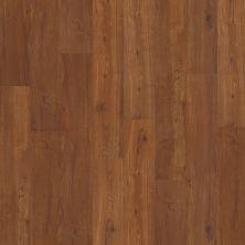 Shaw Floors Vinyl Residential Klamath Falls 00625_0336V