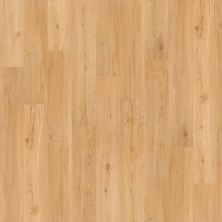 Shaw Floors Vinyl Residential Columbia 12 Waterfall 00219_0369V