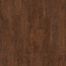 Shaw Floors Vinyl Residential Easy Street Plank Lodge 00751_040VF