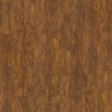 Shaw Floors Resilient Residential Classico Plank Oro 00255_0426V