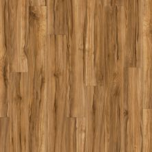 Shaw Floors Resilient Residential Classico Plank Frutta 00609_0426V
