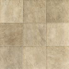 Shaw Floors Resilient Residential Zeus Island Cream 00105_0429V