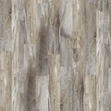 Shaw Floors Resilient Residential Easy Style Five Spice 00546_042VF