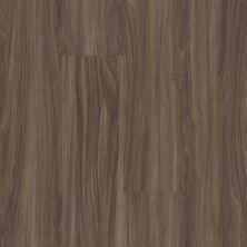 Shaw Floors Resilient Residential Easy Prestige Cinnami 00150_044VF