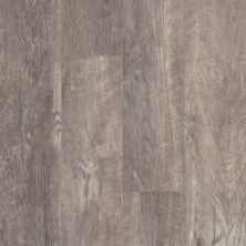 Shaw Floors Resilient Residential Easy Prestige Fumus 00556_044VF