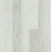 Shaw Floors Vinyl Residential Rainier Plus Century Pine 00181_0456V
