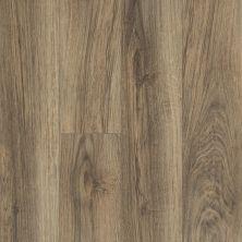 Shaw Floors Vinyl Residential Balboa Plus Riva 00165_0460V