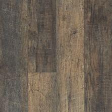 Shaw Floors Vinyl Residential Balboa Plus Avola 00534_0460V