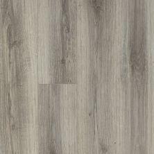Shaw Floors Vinyl Residential Balboa Plus Lince 00571_0460V