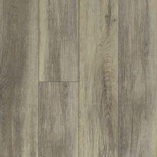 Shaw Floors Vinyl Residential Balboa Plus Delfino 00577_0460V