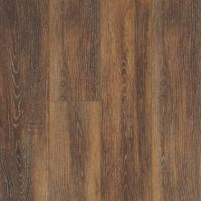 Shaw Floors Vinyl Residential Balboa Plus Arancia 00621_0460V