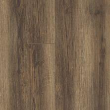 Shaw Floors Vinyl Residential Balboa Plus Cocco 00758_0460V