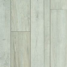 Shaw Floors Resilient Residential Mojave HD Plus Vista 00197_0461V