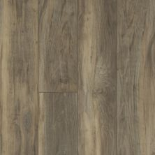 Shaw Floors Vinyl Residential Mojave HD Plus Ardesia 00558_0461V