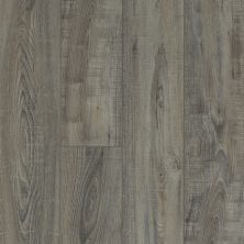 Shaw Floors Resilient Residential Mojave HD Plus Temporale 00578_0461V
