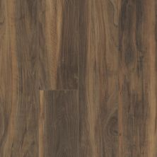 Shaw Floors Resilient Residential Mojave HD Plus Terreno 00737_0461V