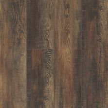 Shaw Floors Resilient Residential Mojave HD Plus Orso 00794_0461V