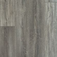 Shaw Floors Vinyl Residential Mojave HD Plus Giardino 05049_0461V