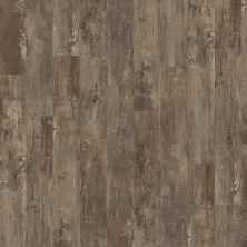 Shaw Floors Resilient Residential Premio Plank Cortona 00575_0490V