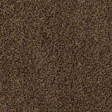 Anderson Tuftex SFA Eastridge Barktone 00758_04SSF