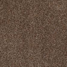 Anderson Tuftex SFA Eastridge Biscotti 00775_04SSF