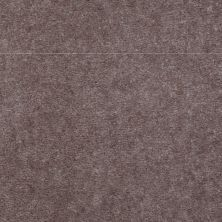 Shaw Floors SFA Mountain Town Wolf Grey 02554_05019