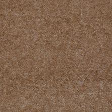 Shaw Floors Queen Alt B Profile Wagon Master 02213_05020
