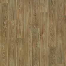 Shaw Floors Vinyl Residential Great Plains Nebraska 00202_0528V