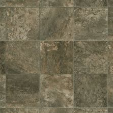 Shaw Floors Vinyl Residential Great Plains Selma 00708_0528V
