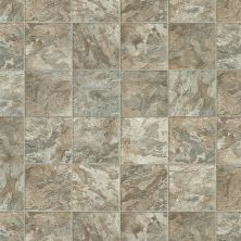 Shaw Floors Vinyl Residential Heartlands Peoria 00550_0529V