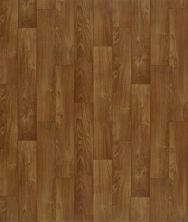 Shaw Floors Vinyl Residential Heartlands Montana 00704_0529V
