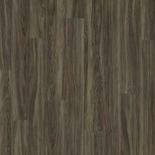 Shaw Floors Resilient Residential Valore Plank Costa 00150_0545V