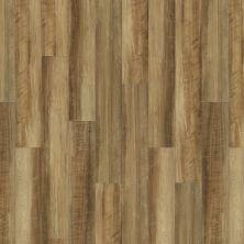 Shaw Floors Vinyl Residential Valore Plank Malta 00203_0545V