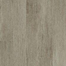 Shaw Floors Vinyl Residential Valore Plank Elba 00216_0545V