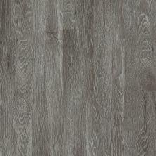 Shaw Floors Vinyl Residential Valore Plank Pola 00590_0545V