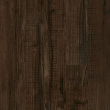 Shaw Floors Resilient Residential Valore Plank Parma 00734_0545V