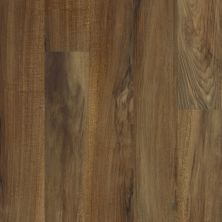 Shaw Floors Resilient Residential Valore Plank Verona 00802_0545V