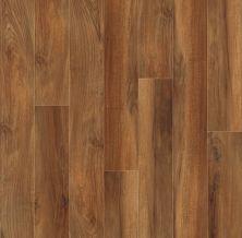 Shaw Floors Resilient Residential Valore Plank Venna 00820_0545V