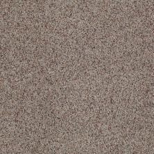 Anderson Tuftex SFA Noticeable II Stoney Ground 0132B_05SSF