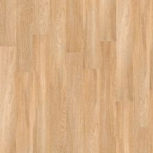 Shaw Floors Vinyl Residential Mrct 9 Paris 00343_0606V