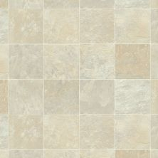 Shaw Floors Vinyl Residential Coastal Plains 12 Cape Cod 00106_0609V