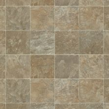Shaw Floors Vinyl Residential Coastal Plains 12 Delmarva 00125_0609V