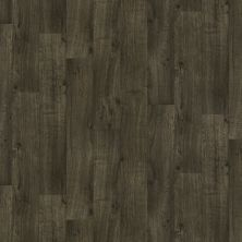 Shaw Floors Vinyl Residential Coastal Plains 12 Louisiana 00508_0609V