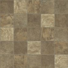 Shaw Floors Resilient Residential Cascades 12c Vernon 00803_0610V
